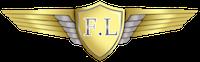 Flying Leaders فلاينج ليدرز